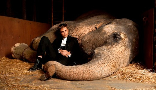 Water for Elephants - Robert Pattinson (left)