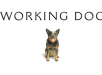 Working Dog Productions Logo