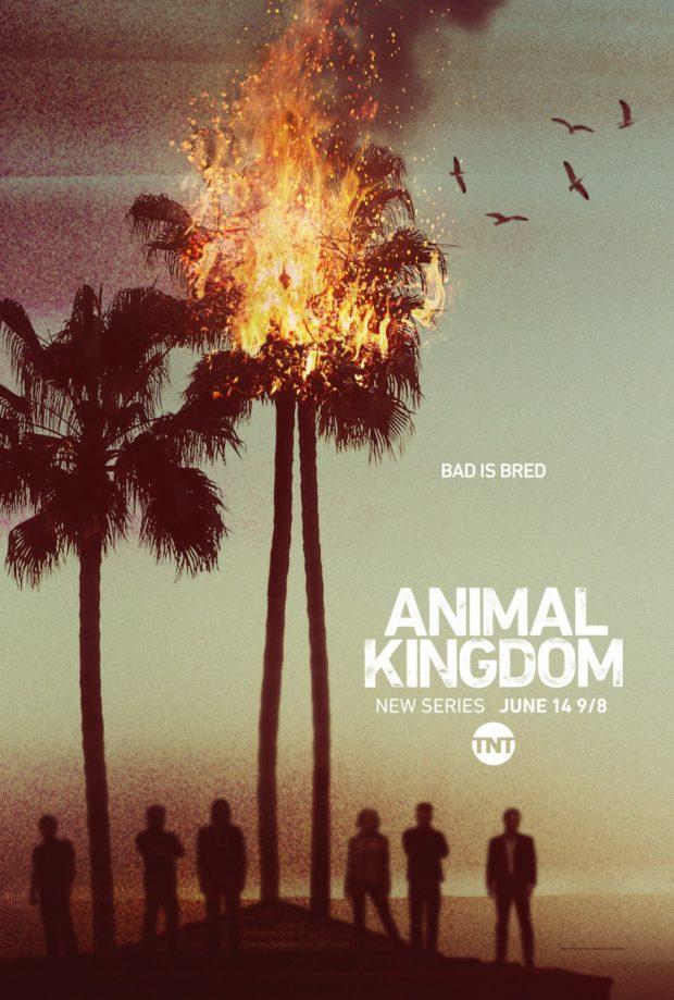 Animal Kingdom (US TV) poster - Designers: Ignition