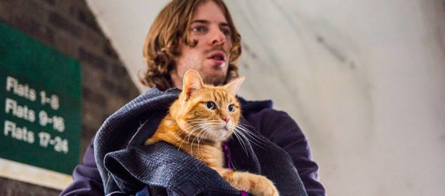 Luke Treadaway (James). Director and Co-producer Roger Spottiswoode. Producer Adam Rolston of Shooting Script Films. Screenplay adapted by Tim John and Maria Nation; based on the International Best Selling book A Street Cat Named Bob.